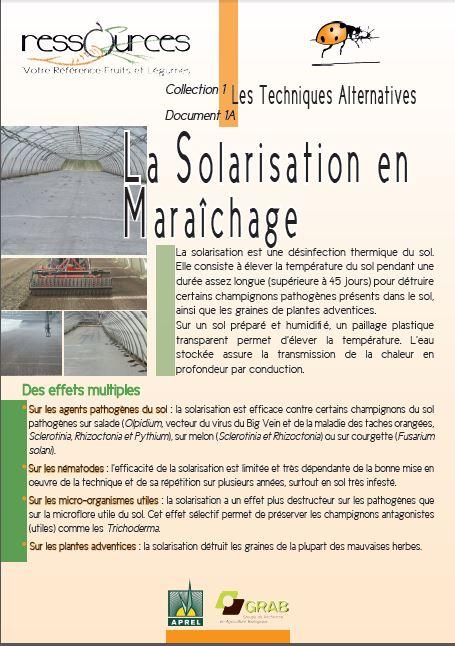La solarisation en maraichage chambres d 39 agriculture - Chambre agriculture alpes maritimes ...