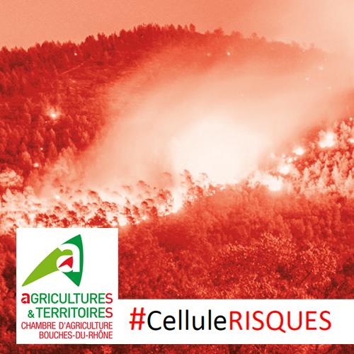 Faire face aux risques d incendies chambres d - Chambre agriculture alpes maritimes ...
